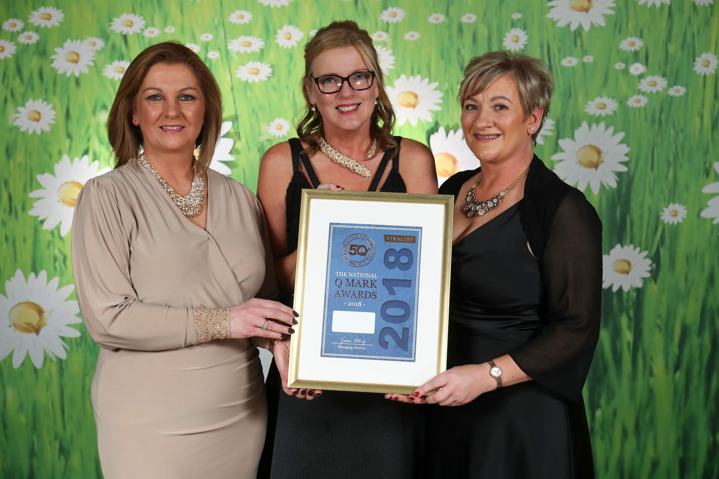 67bdd5553b6 Top honours for Kildare LESN at The National Q Mark awards Best in Class &  among the top 6% of businesses Nationally - Co. Kildare LES